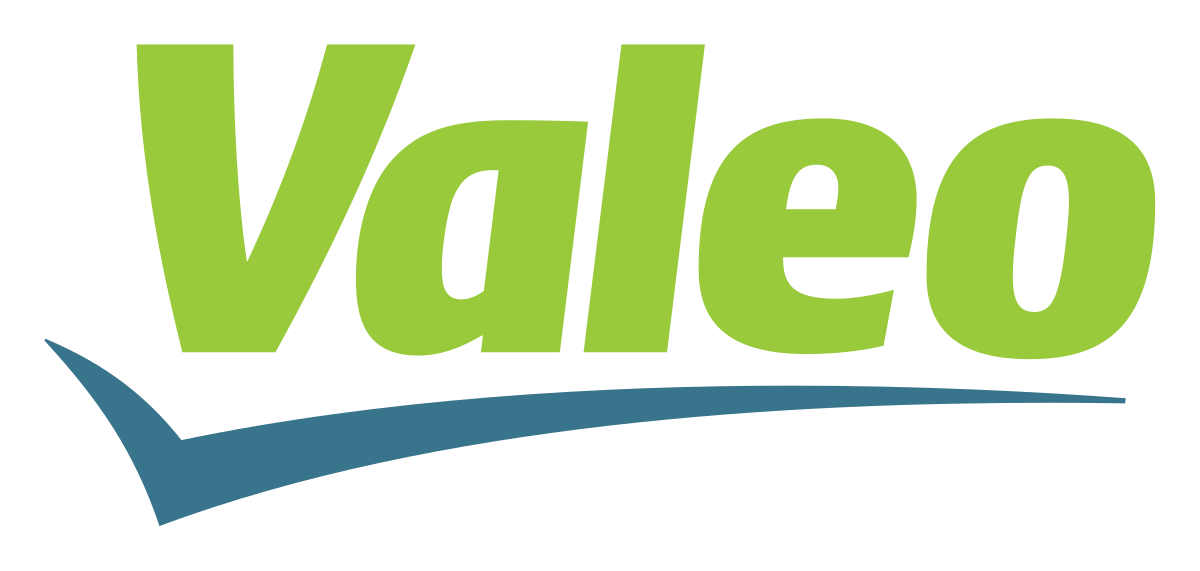 Successful experience at Valeo
